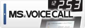 MS VOICE CALL